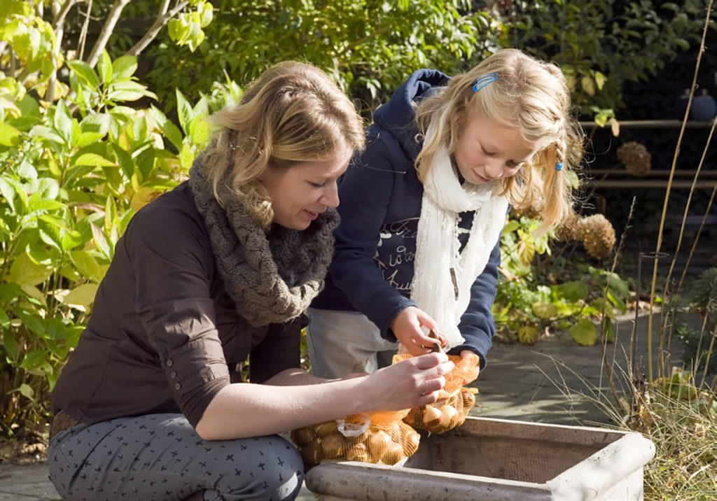 Planting bulbs can be a fun and educational family project. Photo courtesy iBulb.com.